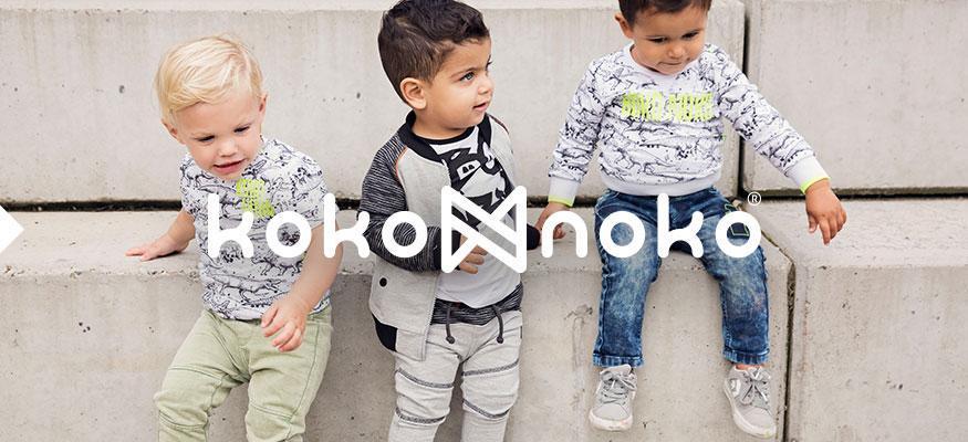 2017 | Einführung Koko Noko